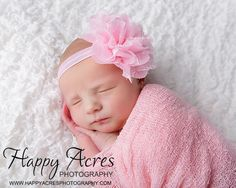 Pink chiffon and lace shabby chic headband....newborn headband, baby headband, photography prop via Etsy