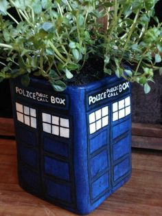 I am so going to find a rectangular pot and paint it like this so that I can be a Thyme Lord.