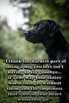 OH so true! BUT it does hurt to say goodbye too.