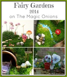 Fairy Gardens 2014 Archives - The Magic Onions