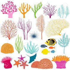 Find Set Colorful Underwater Design Elements stock images in HD and millions of other royalty-free stock photos, illustrations and vectors in the Shutterstock collection. Coral Reef Plants, Coral Reef Art, Coral Reefs, Coral Reef Drawing, Coral Painting, Meer Illustration, Sea Plants, Flora Und Fauna, Ocean Themes