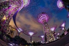 Amsterdã, Barcelona e Xangai: veja cidades onde o futuro já chegou - Cingapura