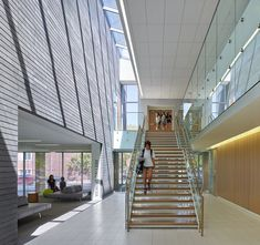 Branksome Hall Athletics & Wellness Centre   MacLennan Jaunkalns Miller Architects (MJMA)   Archinect