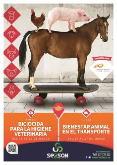 #cursos #Biocidas y #TransportedeAnimales Movie Posters, Movies, Transportation, Wellness, Centre, 2016 Movies, Film Poster, Films, Popcorn Posters