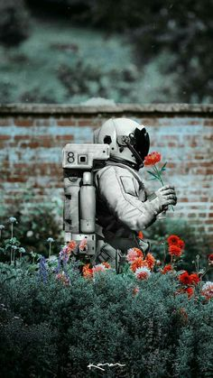 Find images and videos about flowers, wallpaper and bottoms on We Heart It - the app to get lost in what you love. Et Wallpaper, Galaxy Wallpaper, Wallpaper Backgrounds, Astronaut Wallpaper, Foto Art, Belle Photo, Cute Wallpapers, Phone Wallpapers, Collage Art