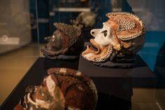 Übermodellierter Ahnenschädel (in der Mitte) Reiss, Skeletons, Alps, Skulls, Snails, Mannheim, Ireland, People, Face