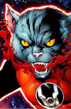 Dex-Starr __ Red Lantern Corps Comic Book Characters, Comic Character, Comic Books Art, Comic Art, Dex Starr, Red Lantern Corps, Anime Animals, Batgirl, Supergirl