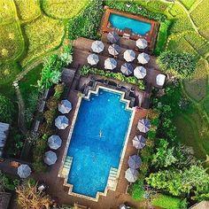 Four Seasons Chiang Mai Resort ❤️ #fourseasons #luxury #travel #weekend #love #summer ☀️