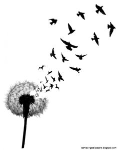 dandelion and birds