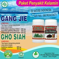 [licensed for non-commercial use only] / Mengobati Kemaluan Pria Bernanah Secara Tradisional Herbalism, Commercial, Blog, Text Posts, Blogging, Herbal Medicine