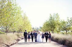 Alicia & Heinie_ @Moira Westhuyzen  @Kleinevalleij Function Centre Function Centre - Wellington Our Wedding, Dolores Park, Weddings, Travel, Viajes, Wedding, Destinations, Traveling, Trips