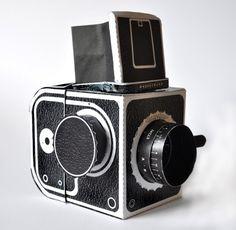 working paper hasselblad pinhole camera