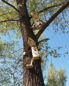 Bird House Kits Make Great Bird Houses Homemade Bird Houses, Bird Houses Diy, Garden Houses, House Gardens, Bird House Feeder, Diy Bird Feeder, Squirrel Feeder, Bird House Plans, Bird House Kits