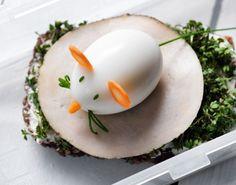 Sjov madpakke-opskrift med æggemus på rugbrød gør kræsne børn til madglade børn. Rugbrødsfrokost fuld af sundhed, smag og eventyr.