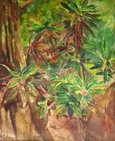 Végétation abondante Huile 55x46