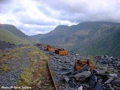 Heritage Railway, Cymru, Felder, North Wales, Welsh, Daffodils, Slate, Things To Do, Places To Go