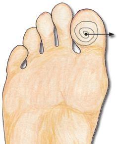 Reflexology pituitary gland reflex point