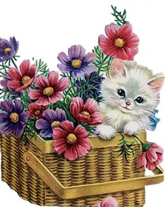 vintage Kitty in a basket Kittens Cutest, Cats And Kittens, Cute Cats, Vintage Birthday Cards, Retro Birthday, Cat Cards, Vintage Cat, Vintage Artwork, Cat Drawing