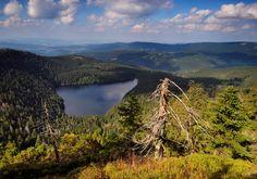 Černé jezero (Black Lake) in Šumava (South-West Bohemia), Czechia Bohemia People, Heart Of Europe, Seen, Beautiful Places In The World, Central Europe, Future Travel, Nature Photos, Czech Republic, Prague