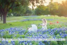 New sister... bluebonnets.  http://www.betsymariephotography.com