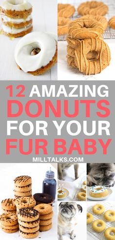 Millennial Talks - 12 Amazing Donuts for Dogs Puppy Treats, Diy Dog Treats, Homemade Dog Treats, Healthy Dog Treats, Dog Biscuit Recipes, Dog Food Recipes, Easy Dog Treat Recipes, Dog Bakery, Dog Cookies