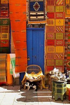 モロッカンキリム。ボヘミアンな雰囲気たっぷりのカーペットは壁面を埋め尽くすように大胆に飾ってあります。 店主のかわりに店番中?