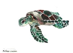 Sea Turtle Original watercolor painting 9 X 12 in by ORIGINALONLY, $29.00