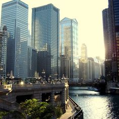 Chicago  - by Anie Rose