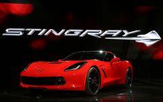 2014 Chevrolet Corvette Stingray Live Reveal!