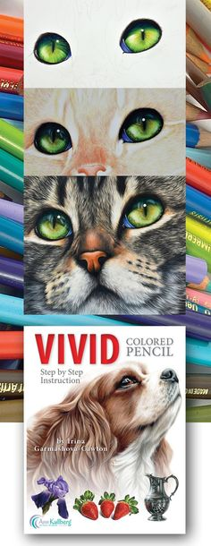 13 drawing demos including animals, still life, botanical, eyes, nose and fur. Detailed overview of colored pencil supplies and techniques. Irina even covers reference photos, photographing your art and framing!