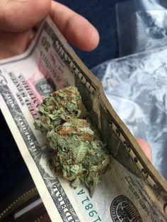 Weed LTD