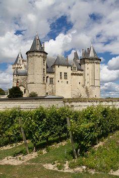 Saumur - château vu des vignes, Loire, France