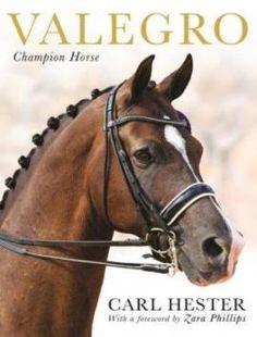 Valero-Champion Horse   love this horse!!!!!
