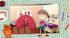 İç Organlarımız   Okul Öncesi Eğitici Animasyon   Anne Bu Ne?
