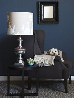 Dark Blue And Black Bedroom love the wall color and carpet combo! | things i want for my home