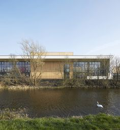 Gallery of Lairdsland Primary School / Walters & Cohen - 1