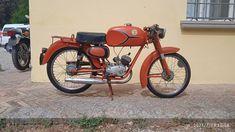 Beta - Camoscio Sport - 50 cc - 1969 Vintage Moped, Antique Auctions, Antiques, Sports, Antiquities, Hs Sports, Antique, Sport, Old Stuff