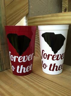 South Carolina Gamecocks Forever To Thee 20oz Personalized Plastic Tumblers
