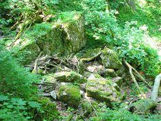 Vértesi Mária-szakadék (Tatabánya közelében 2.3 km) http://www.turabazis.hu/latnivalok_ismerteto_5555 #latnivalo #tatabanya #turabazis #hungary #magyarorszag #travel #tura #turista #kirandulas #szikla #szurdok #termeszet #volgy