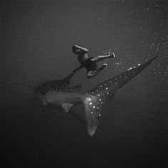 Hengki Koentjoro's dreamy, black-and-white underwater photos capture the mysteries of the deep