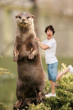 #OtterBatching