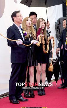 태연(김태연) - [HD포토] 소녀시대 태티서 태연-티파니, '저희 준비 다 됐어요~' (아이폰6론칭) - HD Photo News - TopStarNews.Net