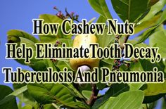 Acne, tooth decay, tuberculosis and pneumonia are all related in a weird way and a simple answer to these problems are actually cashews http://www.extremenaturalhealthnews.com/how-cashew-nuts-help-eliminate-acne-tooth-decay-pneumonia-tuberculosis/