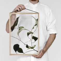 A minimalist frame