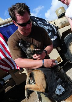 CAMP LEMONNIER, Djibouti (April 2, 2011) - U.S. Navy Lieutenant Junior Grade John Maurus, Explosive Ordnance Disposal Mobile Unit 11 team leader, thanks Zeus, a U.S. Navy military explosive detector working dog, after completing the EOD Memorial five kilometer run April 2. photo by U.S. Air Force Master Sgt. Dawn M. Price)