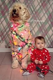 Image result for family christmas card ideas with dogs and baby