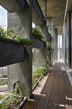 弥富ヶ丘の家 of 住宅建築