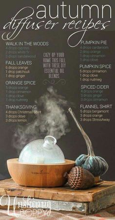 Gotta try all of these DIY essential oil diffuser blends for fall. Yummy smelling house here I come. essential oil blends doterra How to Buy Young Living Essential Oils - Unskinny Boppy Diy Essential Oil Diffuser, Doterra Essential Oils, Young Living Essential Oils, Essential Oil Blends, Nature Love Essential Oils, Clove Essential Oil, Essential Oil Candles, Yl Oils, Diffuser