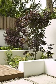 Cool Contemporary Garden | Flickr - Photo Sharing!