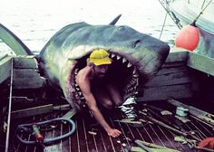 Este monstruoso tiburón blanco no es lo que parece